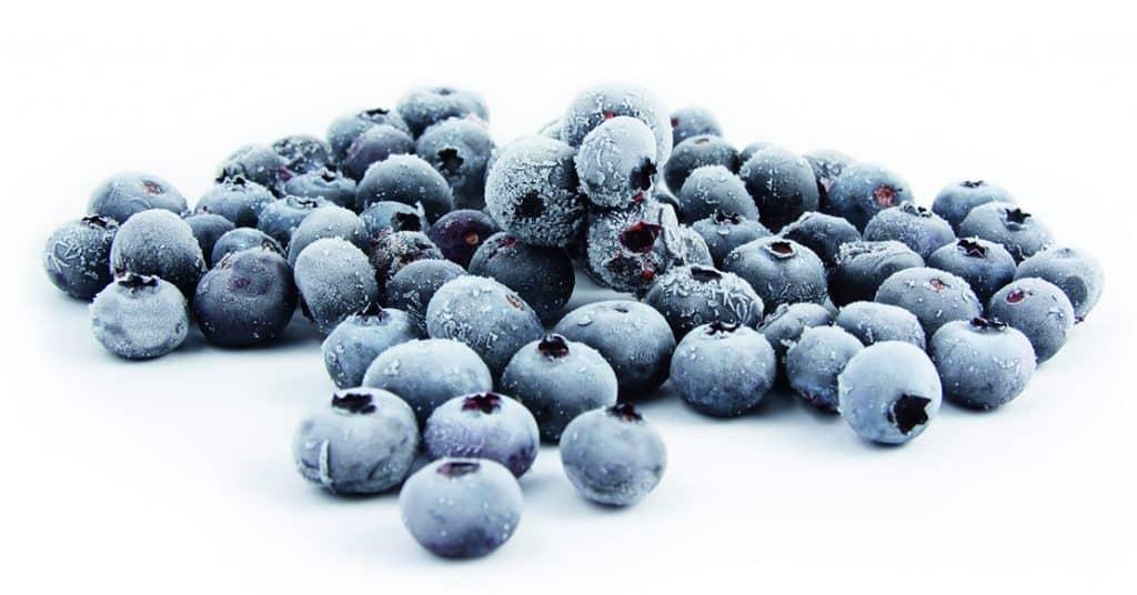 frozen blaubeeren2