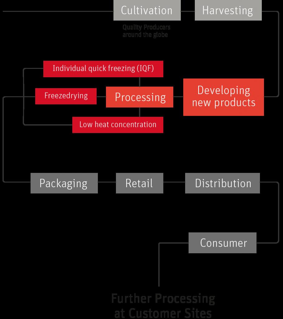 production chain desktop eng